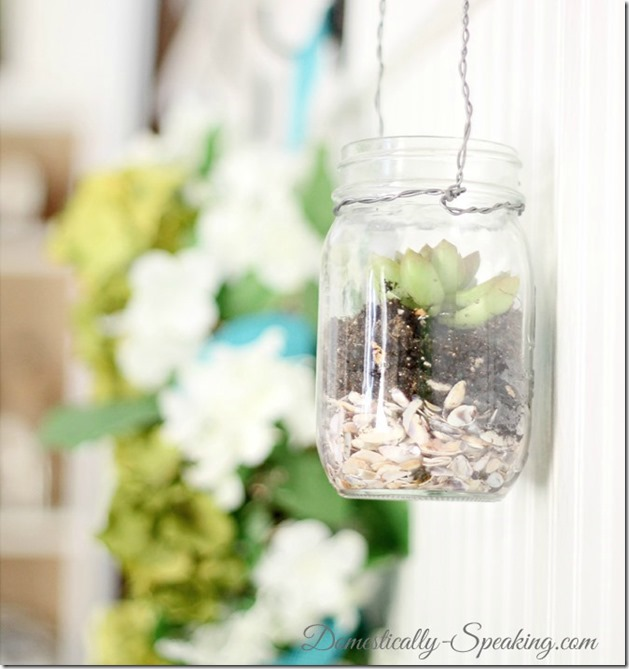 mason-jar-succulents-2