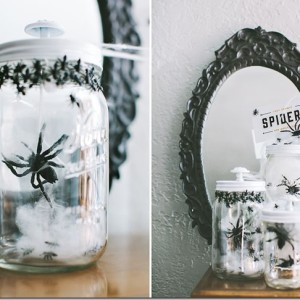 Spiders in Mason Jars