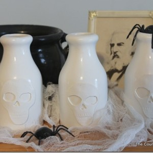 Pottery Barn Skull Jars