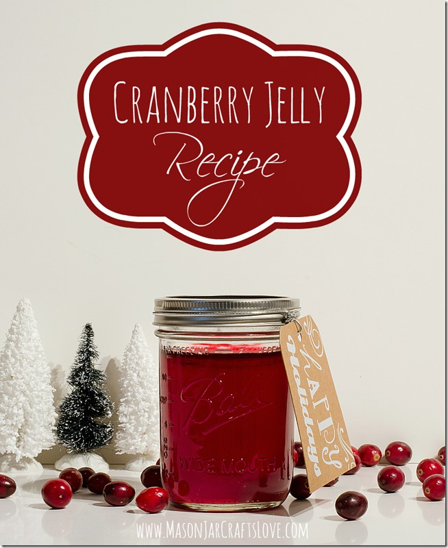 cranberry-jelly-recipe-mason-jar-crafts-love-blog