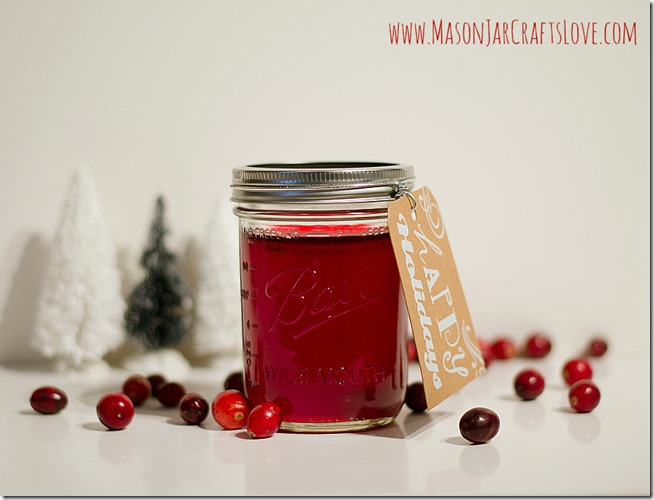 cranberry-jelly-recipe-mason-jar-crafts-love