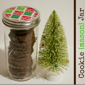 Holiday-Cookie-Gift-Ideas