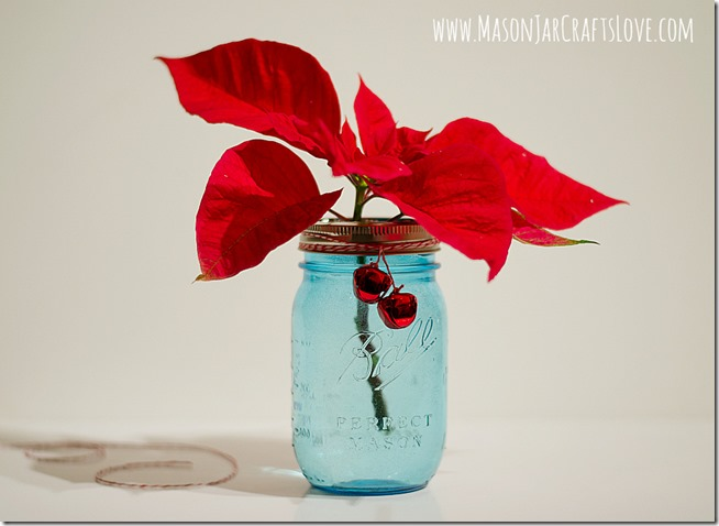 frog-lids-for-mason-jars-poinsettias-in-vase