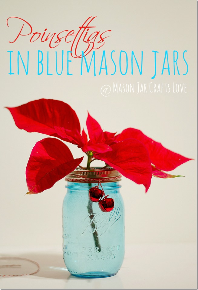 poinsettias-in-mason-jars