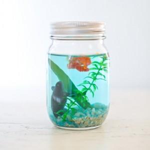 mason jar craft