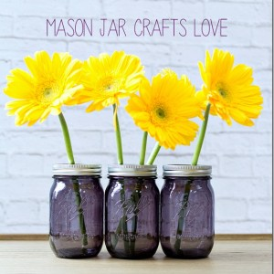 ball purple mason jars