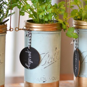 mason jar planter ideas