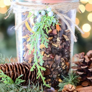 Potpourri Simmer Pot Recipe for Christmas