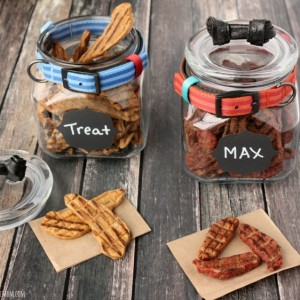 Mason Jar Craft Ideas: Dog Treat Jars