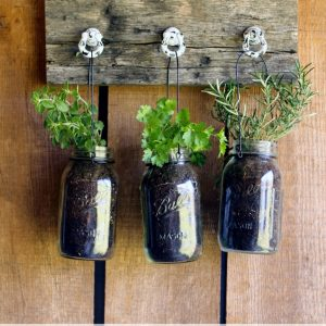 Hanging Herb Garden with Mason Jars