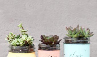 mason jar painted succulent planters - mason jar planters