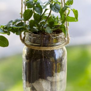 Mason Jar Hanging Herb Planter