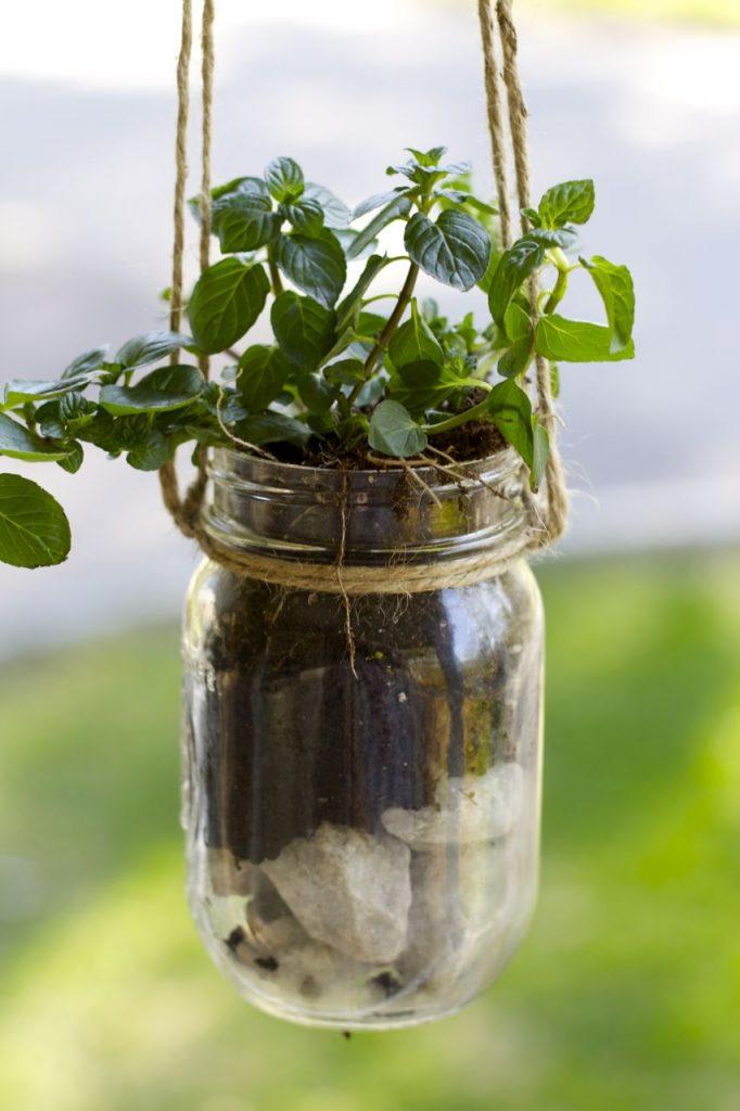 Mason Jar Hanging Herb Planter