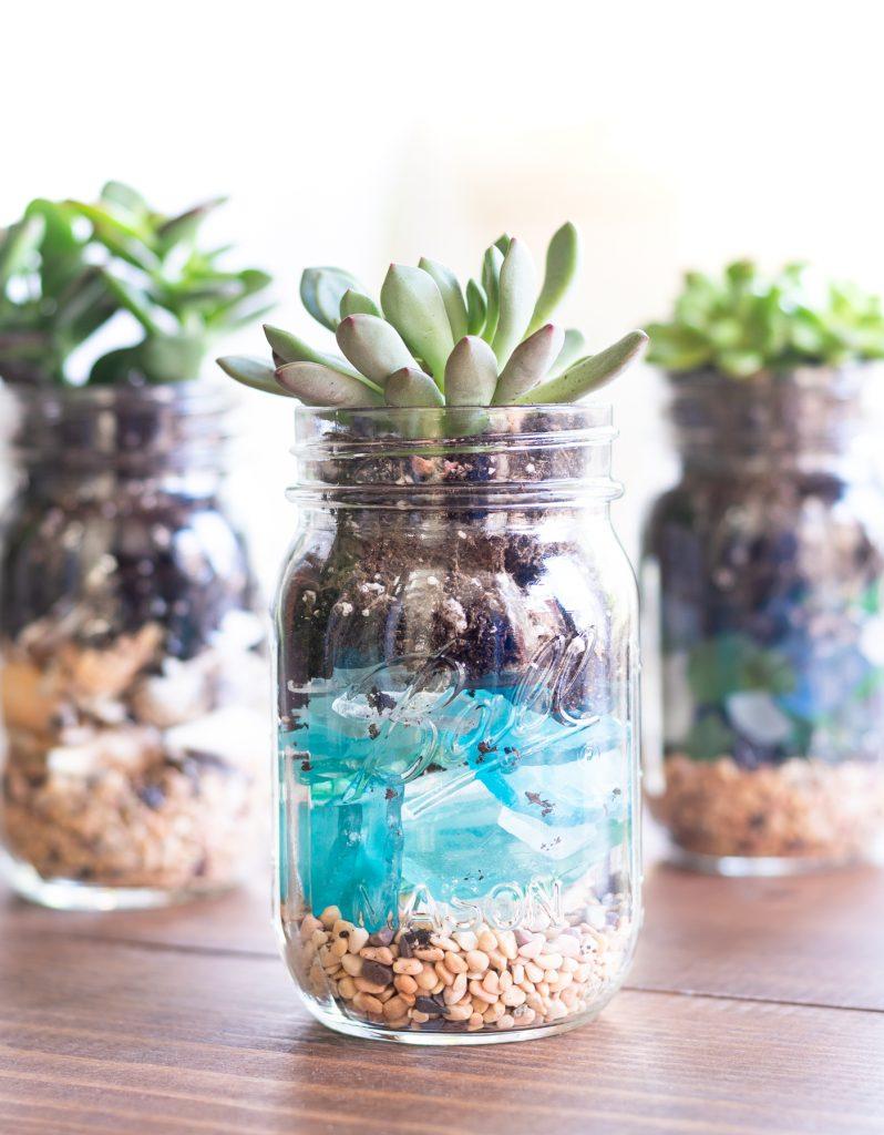 Mason Jar Terrarium Mason Jar Crafts Love