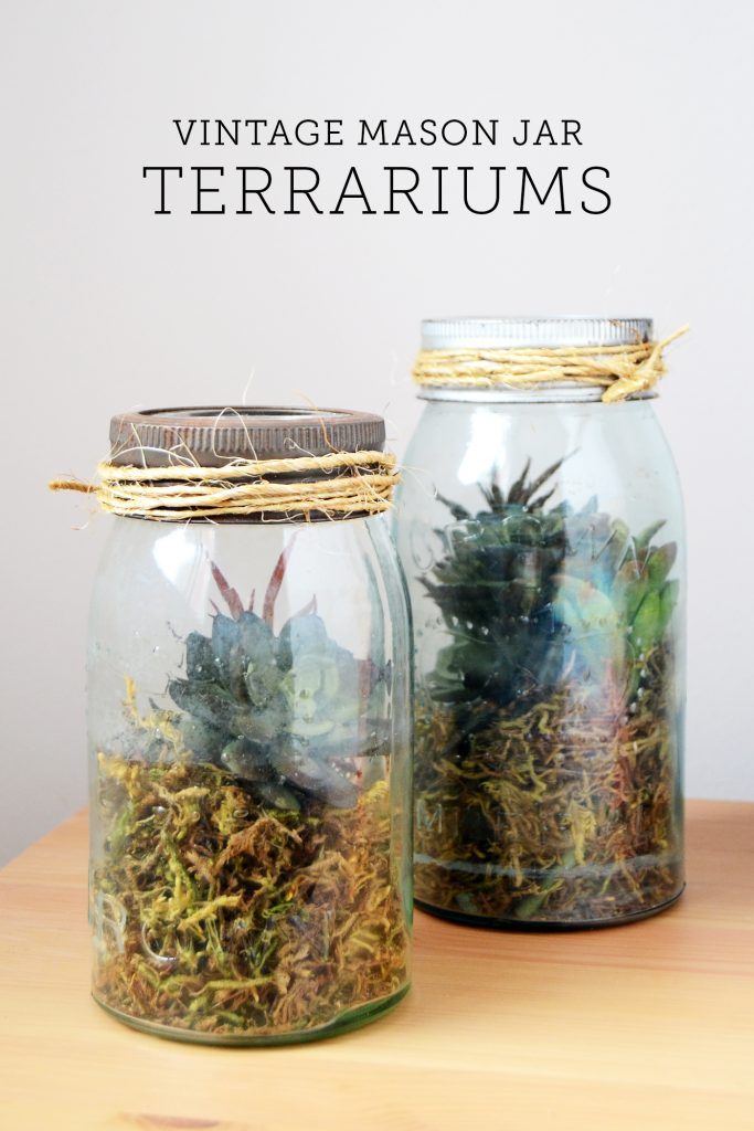 mason jar terrarium - how to make a mason jar terrarium